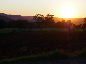 Sunset in Springbrook