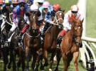 Ten's Melbourne Cup broadcast sheds 500,000 metro viewers