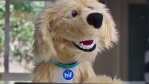 HIF celebrates 65th birthday with new campaign