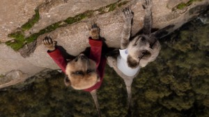 Compare the Market's meerkats return in new TVC