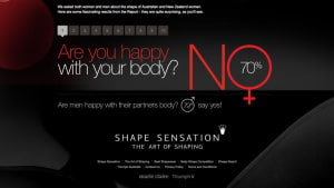 Shape Sensation