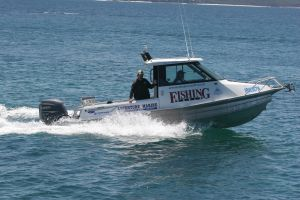 Head to Head - 200HP Outboards - Fishing World