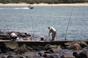 Rec fishing licence proposed for QLD - Fishing World