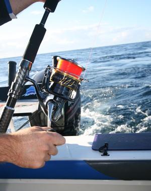 Sneak Peek: Shimano Stella 30,000 - The Big Beast! - Fishing