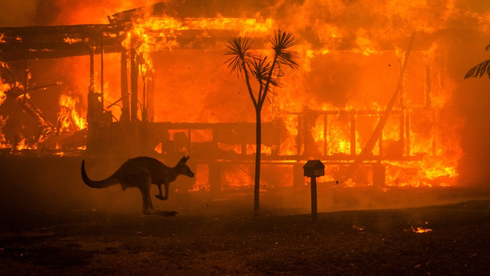 This image of a burning home in Lake Conjola in New South Wales, Australia, was taken in the middle of the day on New Year's Eve. Image by Matthew Abbott for The New York Times.