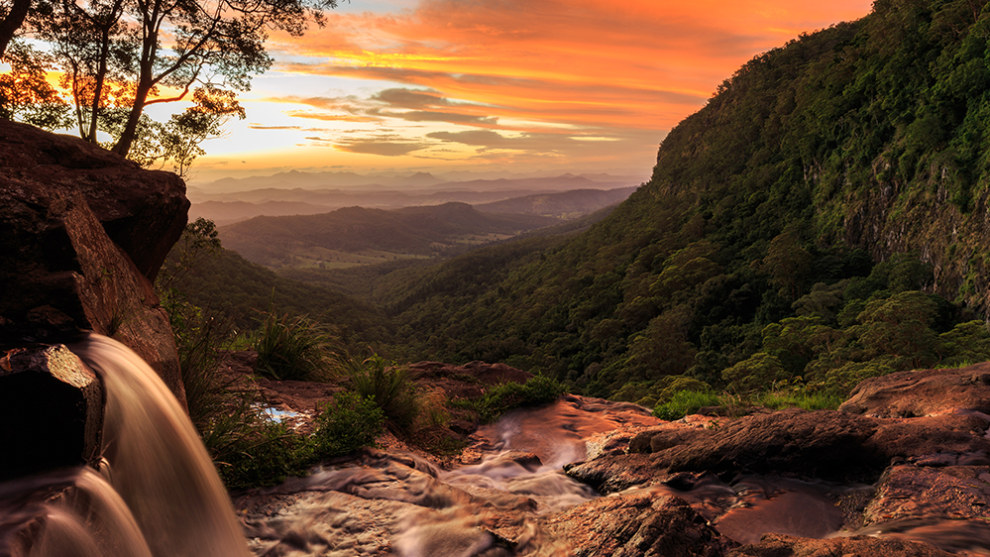 Lamington National Park, Queensland. Photo by Ryan Fowler.