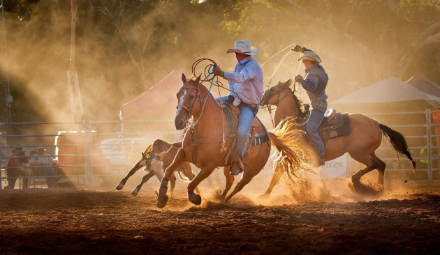 Judge's Choice Winner - 'Clare Rodeo' by Sabin Flutur