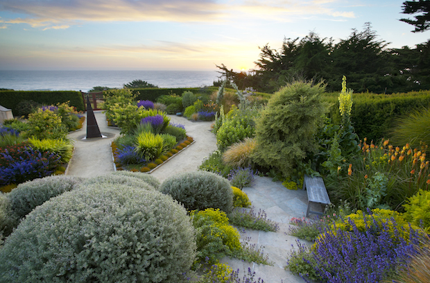 Photo Tip of the Week: How to Shoot Great Garden Images ... on Coastal Backyard Ideas id=94834