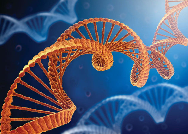 Software is the DNA of any printing operation.