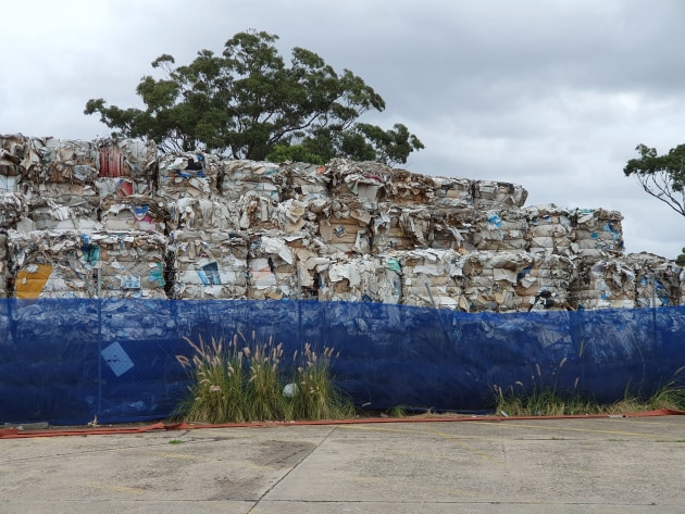Paper to be recycled at Orora's plant in Botany, Sydney.