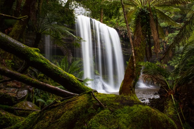 Russell Falls, Mt Field National Park, Tasmania, Australia. Peering through the trees at Russell Falls is one of the classic compositions at this amazing waterfall. I have found over the years that this particular composition means less water spray when it is in full flow. Canon 5D Mark III, 24-70mm f2.8L lens @ 24mm, 0.5s @ f22, ISO 100. CPL, tripod. RAW adjustments in Lightroom CC, Curves, levels and colour correction in Photoshop CC.