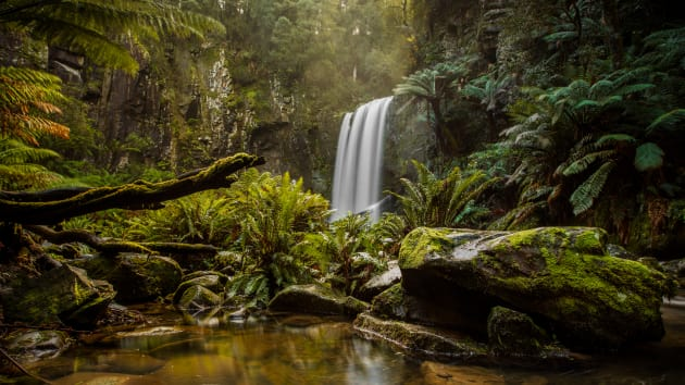 Hopetoun Falls, Otway National Park, Victoria. Hopetoun Falls is a must do when travelling along the Great Ocean Road. Thankfully this trip was perfectly timed after a lot of rainfall around the region and I was able to capture one of my own personal favourite images. Canon 5Ds, 16-35mm f/2.8L II lens @ 18mm, 8 seconds @ f11, ISO100. NiSi V5 CPL, NiSi 0.9 SG ND.