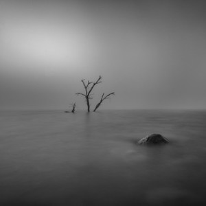 <i>A thick fog rolled through during a fishing trip at Lake Eucumbene so it was down with the rods and full steam ahead with the camera. Canon EOS 6D, Canon 17-40L @ 21mm, 60s @ f/8, ISO 100, Lee Big Stopper. Image processed in Lightroom.</i>