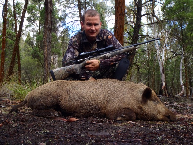 James Angel first pig