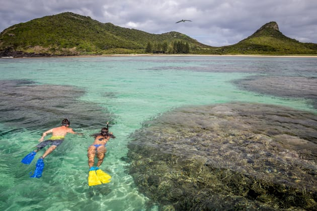 Snorkelling on Lord Howe Island. Photo: Luke Hanson.