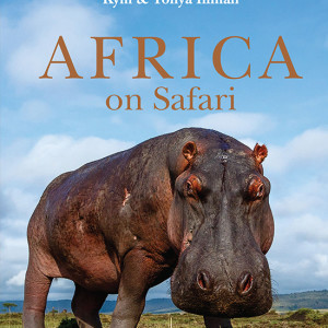 'Africa on Safari' is a collection of unique images of wildlife, taken up close through the use of camera buggies which have provided unprecedented access.
