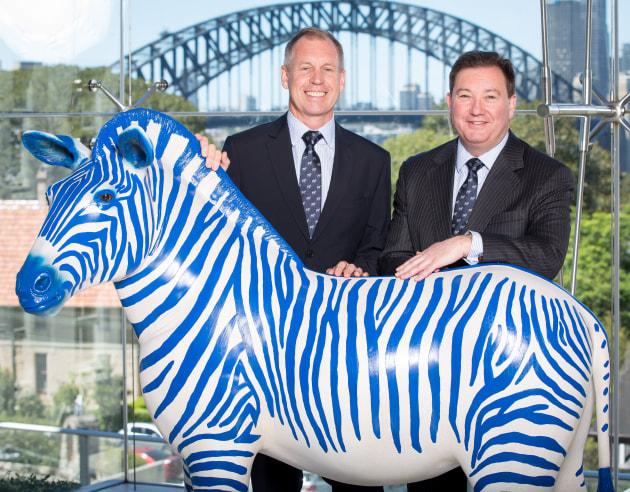 Blue Zebra S Take On Insurance Australasian Paint Panel