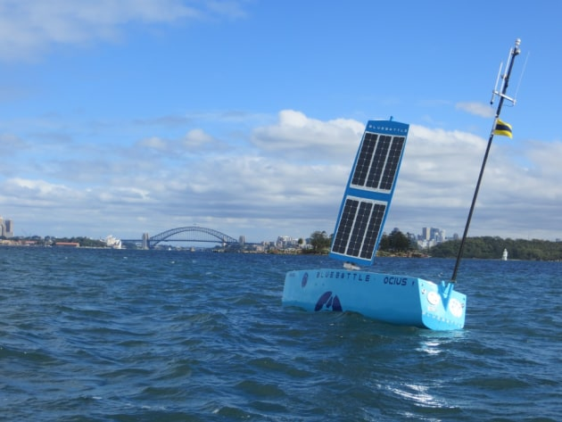 Ocius' Bluebottle USV, nicknamed 'Bruce', in Sydney Harbour. Credit: Ocius