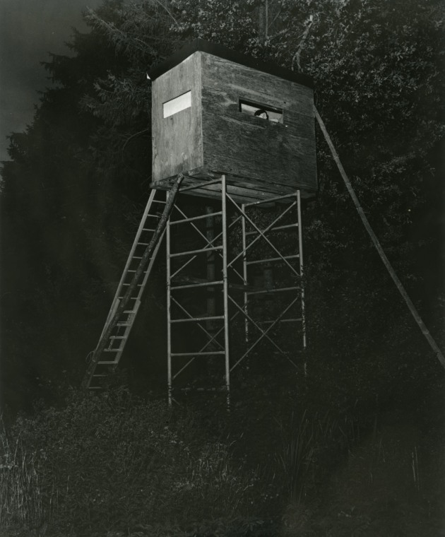Celia inside a watchtower 2018 Wouter Van de Voorde Gelatin silver print I made this photograph during my most recent visit to my home country, Belgium. On a nightly walk through the countryside, my wife Celia Hindmarsh discovered this watchtower and ascended to look out over the cornfields.