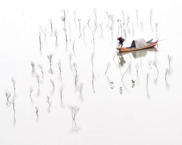Hilda Champion. Title: In the Mangroves. A contemplative image of a fisherman inspecting his mangrove seedlings.