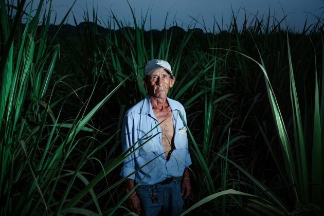 © Ed Kashi (VII Photo). A former field worker sick with CKDu is photographed in the sugar cane fields that he worked in for 25 years, in Chichigalpa, Nicaragua on April 25, 2014. Reyes is currently sick with CKDu and spoke out against one of the worker organizations, ASOCHIVIDA, in 2013. He has stopped receiving his food provisions. He also fought for the Sandanistas when he was 10 years old.