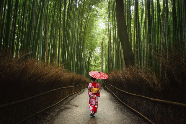 Japanese Bamboo Forest. The bamboo forest in this photo in Kyoto, Japan, is already powerful and beautiful, but the addition of the lady in a kimono adds an initial focal point in an image where there otherwise wouldn't be a strong one. The size of the human adds a sense of scale to the image, which makes the bamboo even more spectacular with its vast height. The addition of the lady also helps give a sense of culture and location in the world. Nikon D800, 24-70mm f/2.8 lens @ 29mm. 1/125s @ f3.2, ISO 2000.
