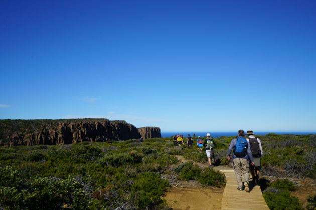 The track to Cape Raoul.