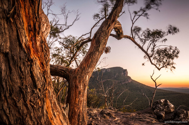 Grampians NP Timber Frame – Sunrise over Mt Abrupt from The Picanninny. A long exposure to capture the breezy conditions and add some life to an otherwise static scene. Stopping down and focussing at hyperfocal distance allowed good depth of field throughout. A focus stack could have been used, at a sharper aperture, but the moving objects may not have blended well. Nikon D300, 18-200 mm f/3.5-5.6 at 18 mm, 4.0 sec at f/22, ISO 100, tripod