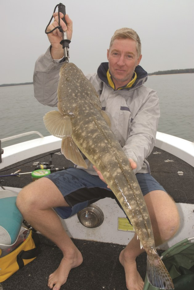 How to catch big flathead in shallow water - Fishing World - photo#38