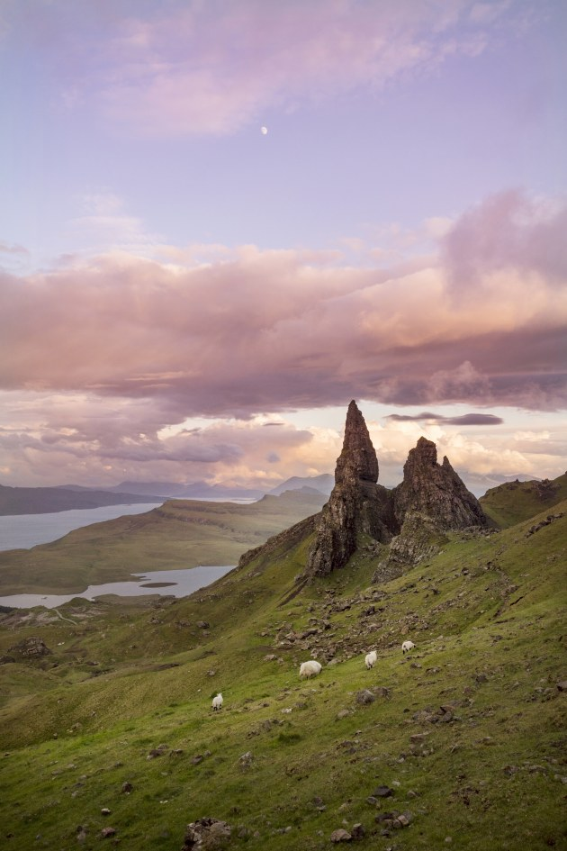 Personally my favourite images to share are the ones that have a story behind them or took a little extra effort to capture. This image of the Old Man of Storr in Scotland was captured at 11pm with only sheep left on the hiking trail, one of my favourite travel moments. Olympus E-M1 Mark II, 12-40mm f/2.8 lens. 1/1600s @ f3.2, ISO 400.