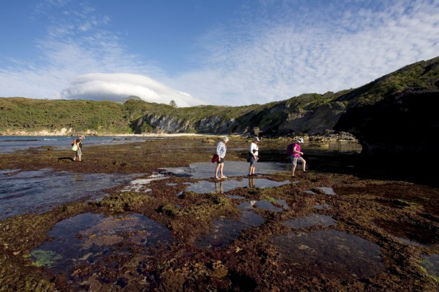 Exploring rock pools.