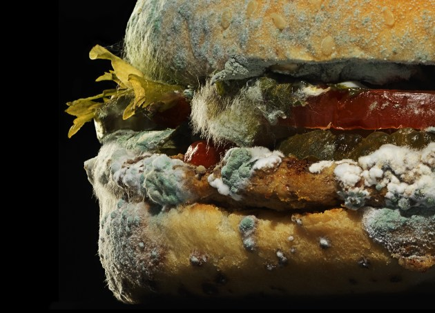 © Pål Allan. The beauty of no artificial preservatives. Part of Burger King's The Moldy Whopper campaign. Agency: INGO Stockholm ECD: Björn Ståhl.