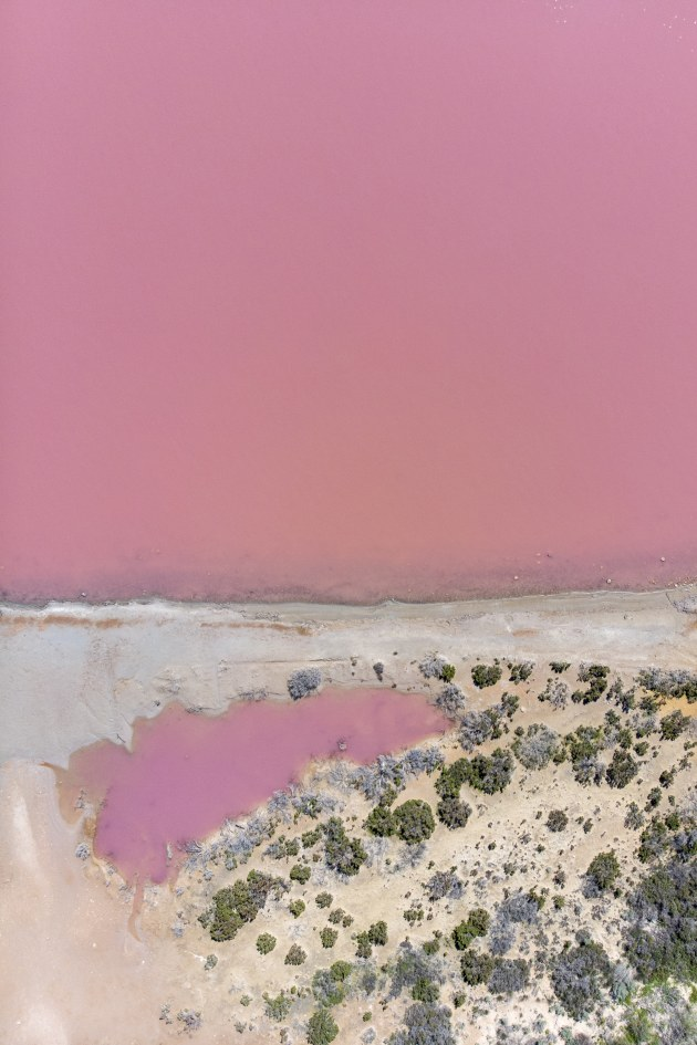 Inspiring landscapes with striking features that highlight somewhere a little off the beaten path will typically be well received online and generate discussion. This aerial of the Pink Lake of Port Gregory in WA had almost triple the engagement than that of an image shared from the more popular Pinnacles further down the coast. DJI Mavic Pro. 1/1250s @ f2.8. ISO 100.