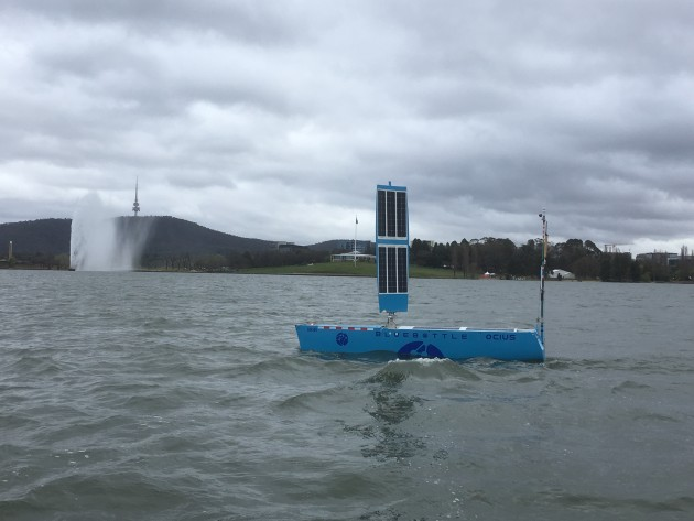 Bob the Bluebottle on Lake Burley Griffin. Credit: Ocius