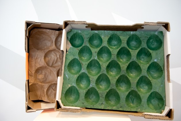 PIDA 2020: Sustainable Packaging Design - Product Protection, joint Gold winner is Orora Fibre Packaging (now Opal Packaging), for recyclable moulded paper inserts for fresh produce.
