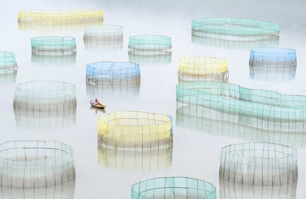 © Marsel van Oosten, Netherlands. Special Mention, Mankind, TPOTY 2016. A farm worker rows out to inspect the nets of a large crab farm in the sea. Aquaculture is an important economy in the eastern coast seaside towns in Xiapu county, Fujian, China.