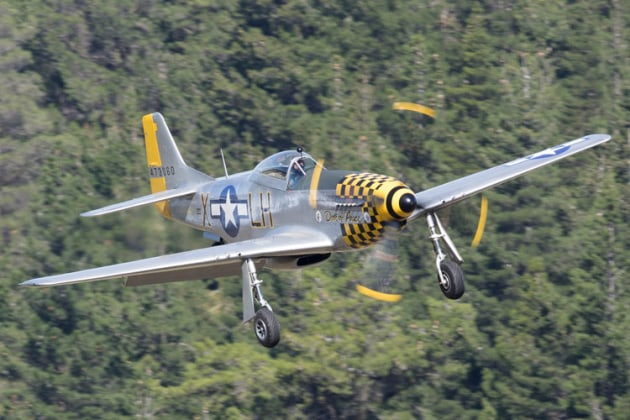 Mustang Dove of Peace during her display sequence. (Phil Hosking)