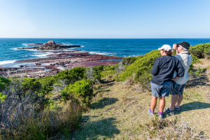 Daydream over these top Aussie walks