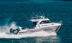 Sailfish 3200 Platinum
