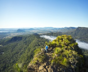 ParkTours offers five-day Scenic Rim tour