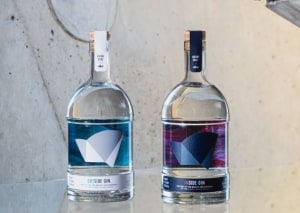 Twin gin act in custom packaging for Sydney icon