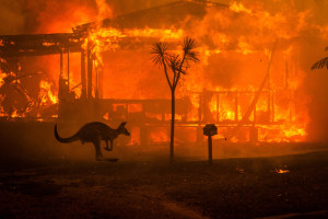 The devastation of Australia's fires, in one frame