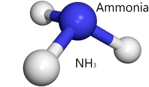 Researchers create green ammonia