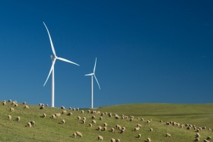 Stewardship scheme for renewables