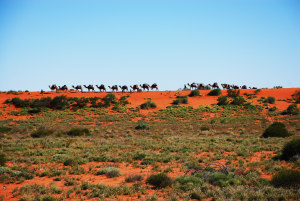 Australian Desert Expeditions shows you a different country