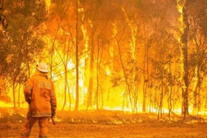 Wildfires close multiple Qld national parks