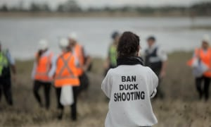 The Victorian Government Fails Duck Hunters - The Agenda Is Clear