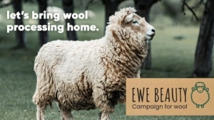 Ewe Beauty: Woolpack pioneer launches campaign
