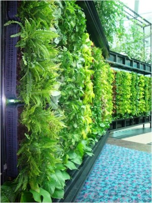 Smart ideas for a greener business