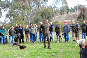 Gun Dog Training Weekened